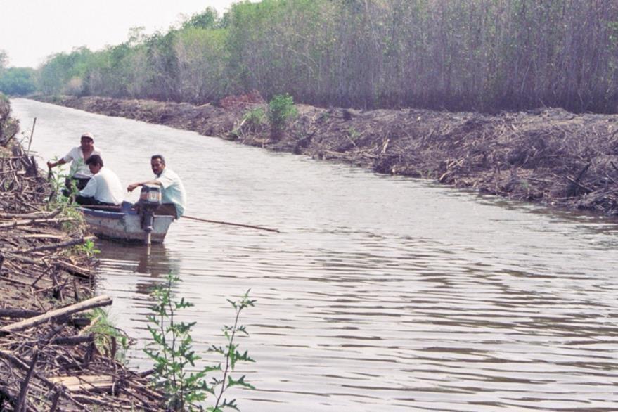 La foto, captada el año pasado, muestra la deforestación del manglar en la zona de Monterrico.