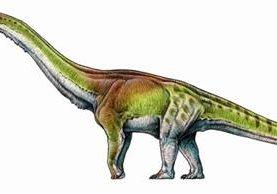 Los fósiles del 'Patagotitan mayorum' fueron encontrados desde finales de 2012 en la región de la Patagonia de Argentina. G. LIO/PA WIRE