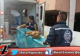 Socorristas atienden a perro agredido en Santa Cruz del Quiché (Foto Prensa Libre: Canal 4 Quiché)