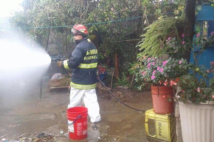 Los socorristas lanzaron cientos de galones de agua para matar a las abejas y así evitar que atacaran a más personas. (Foto Prensa Libre: Víctor Chamalé)