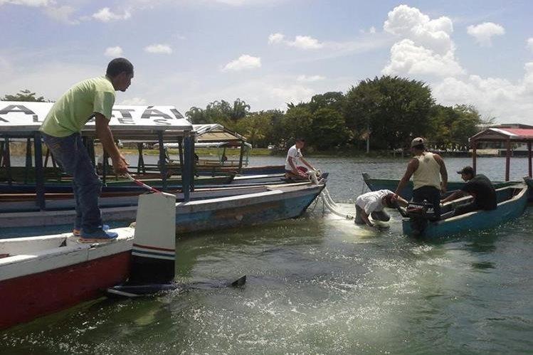 Lancheros que trabajan en el Lago Petén Itzá acuden al lugar donde un helicóptero cayó, en cercanías de un helipuerto en Santa Elena, Flores. (Foto Prensa Libre: Rigoberto Escobar)