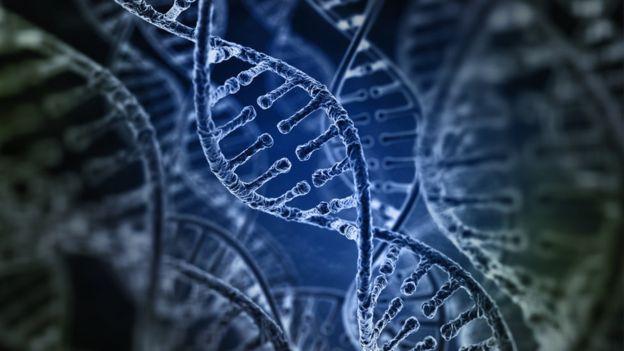 Durante años no se conocía bien el origen de los retrovirus endógenos. Se sabía que era una especie de espacio entre lo que realmente era útil en el genoma humano. ILEXX / GETTY IMAGES