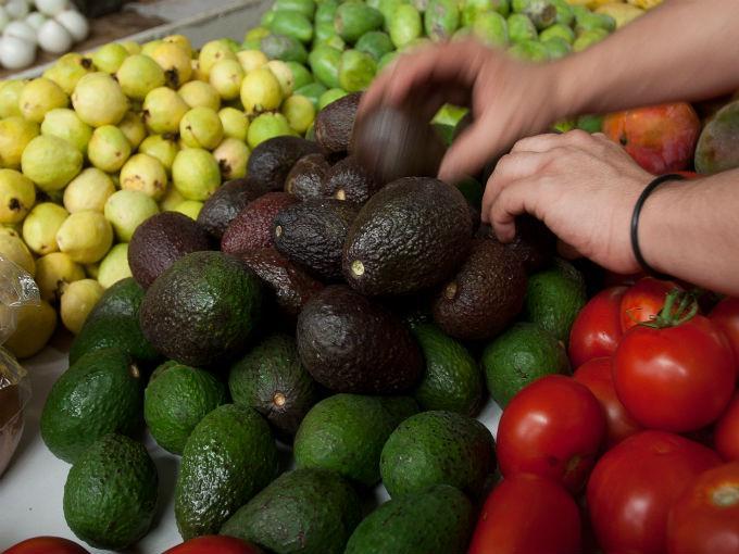 México experimenta un auge en la producción agrícola. (Foto Prensa Libre: mexicoxport.com)