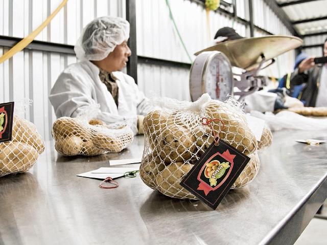 Centros de acopio son la principal propuesta para mejorar cadena de producción agrícola y generar más de 25 mil empleos en el corto plazo. (Foro Prensa Libre: Cortesía Agexport)