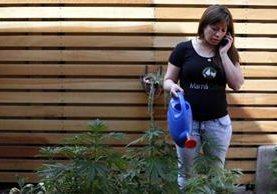 Paulina Bobadilla. (Foto Prensa Libre: AP)