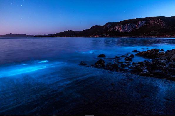 El espectacular resplandor del mar que sorprende en Australia