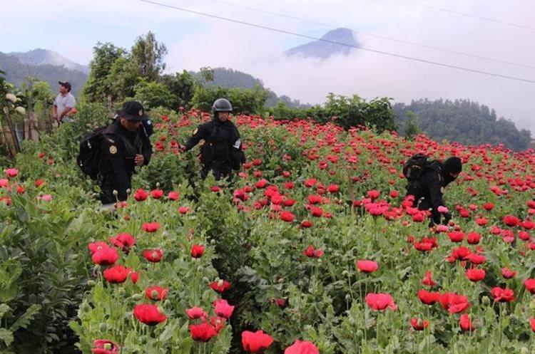 El Gobierno decretó estado de prevención en Ixchiguán y Tajumulco, San Marcos. (Foto Prensa Libre: PNC)