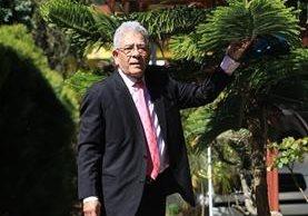 Hace cinco años, Miguel Ángel Gálvez Aguilar sembró una araucaria en su jardín porque le recuerda a uno de sus autores favoritos, Hermann Hesse. (Foto Prensa Libre: Esbin García)