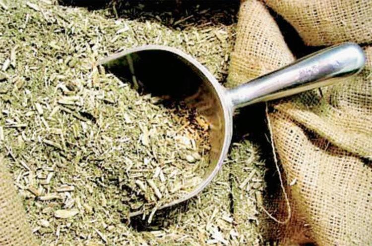 El Instituto Nacional de la Yerba Mate defiende a esta infusión y destaca sus propiedades nutriiconales. (Foto Prensa Libre, tomada de misionesonline.net)
