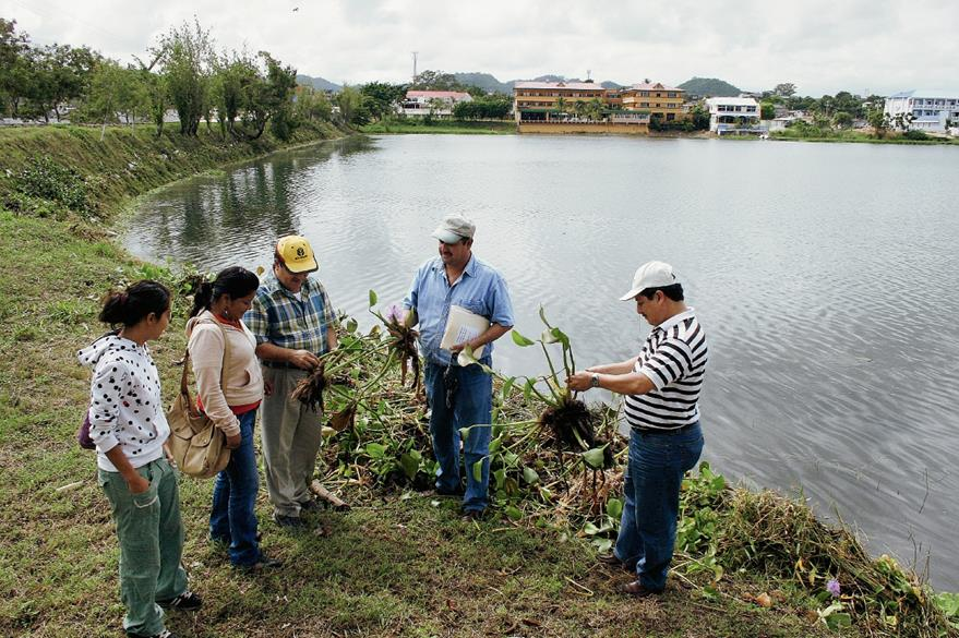 Personal de Ambiente monitorea el Lago Petén Itzá, en Petén.  (Foto: Hemeroteca PL)