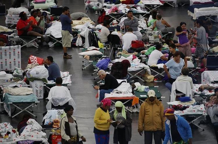 El centro de convenciones de George R. Brown llenó la capacidad ya ha recibido más de 9 mil evacuados. (AFP).