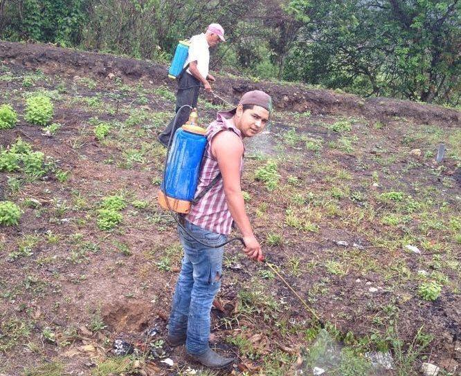 Mike Wilson Arita Hurtado, de 24 años, apoyó a su padre en las labores agrícolas mientras vivió en Chanmagua, Esquipulas. (Foto Prensa Libre: Cortesía)
