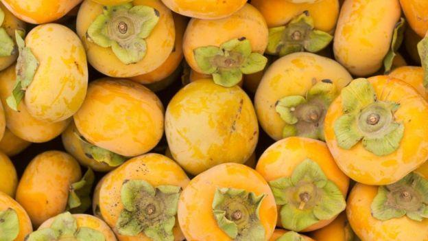 ¿Es posible que Ulises haya comido estas frutas, Diospyros lotus? ALAMY