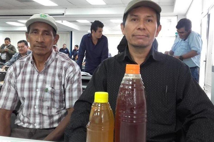 Productores de miel se presentarán en Agritrade la próxima semana. (Foto Prensa Libre: Agexport)