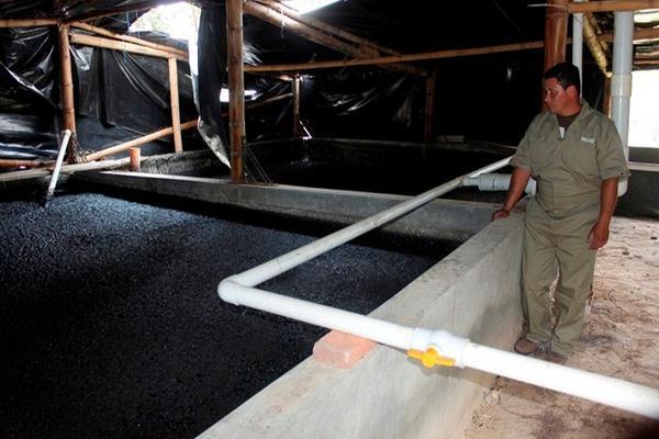 <p>Tanque Biodigestor, donde las bacterias generan metano a partir de estiércol. (Foto Prensa Libre: Miguel López)<br></p>