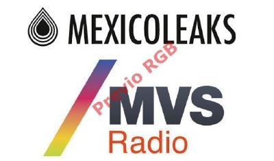Un grupo de medios de comunicación y organizaciones civiles lanzaron MéxicoLeaks.