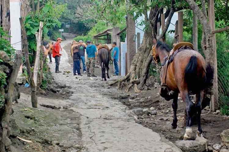 Guías de turismo del Volcán de Pacaya, en San Vicente Pacaya, Escuintla, esperan que con el plan de seguridad se incremente el número de visitas.