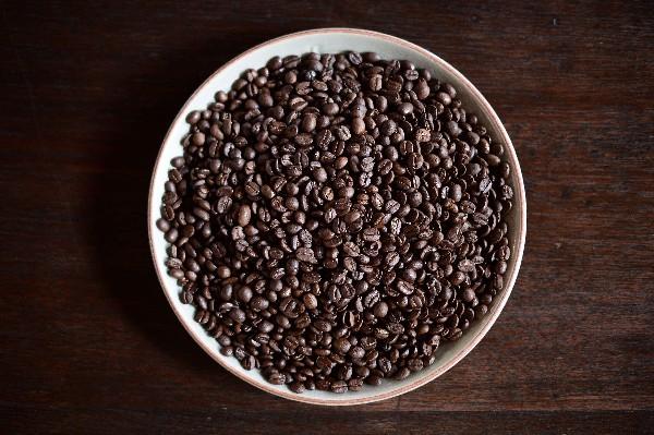 Los granos de Black Ivory Coffee son cotizados en Tailandia. (Foto Prensa Libre: AFP)