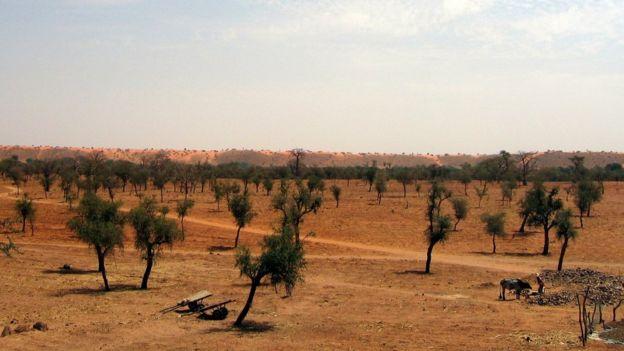 El Sahel es la zona de transición, que atraviesa África, entre el desierto del Sahara y la sabana sudanesa. (Foto Prensa Libre: Getty Images)
