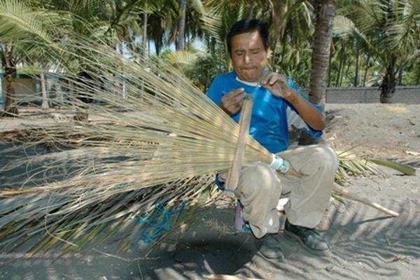 La palma y sus bellos usos - Escobas de palma ...