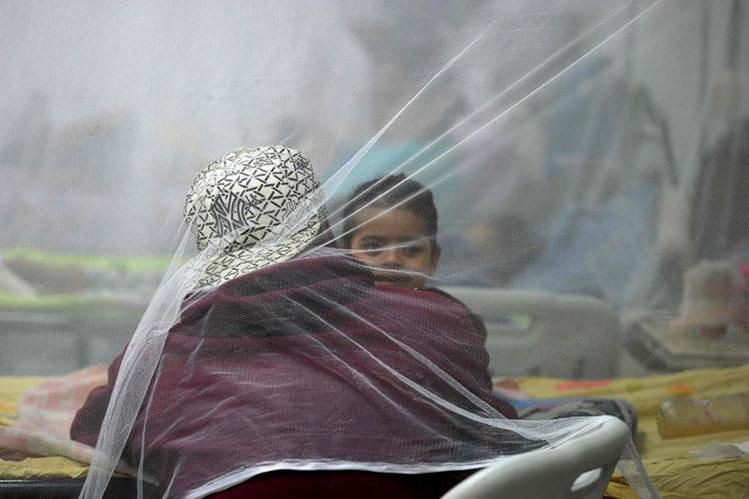"""El estudio sostiene que el zika causa una """"cascada de destrucción"""" en el sistema nervioso. (Foto Prensa Libre: AFP)."""