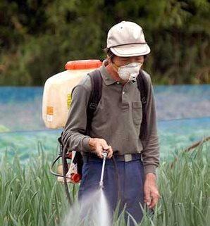 La oenegé advierte los peligros de los pesticidas para el consumo humano y el medioambiente. (Foto Hemeroteca PL).
