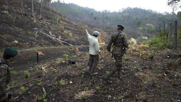 Solo este año se han presentado 192 incendios forestales en esa zona de Guatemala. (AP)