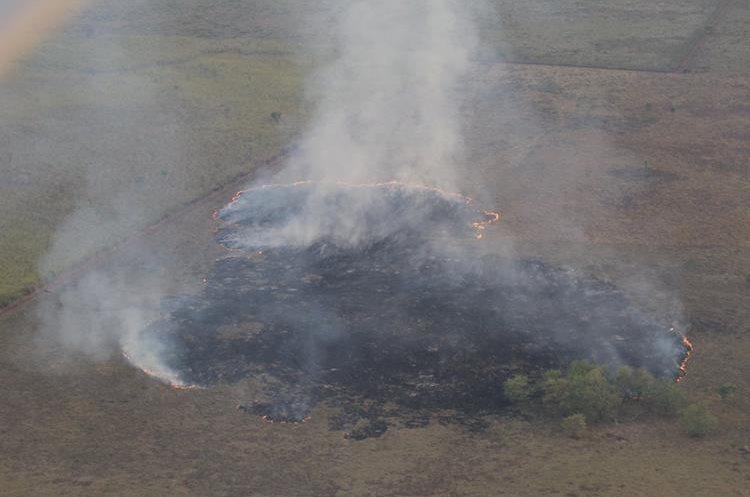 La Laguna del Tigre ha perdido 34% de cobertura vegetal en 33 años.