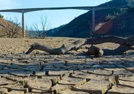 La sequía afecta a California desde hace más de 4 años y lluvia podría dar un respiro este fin de semana.