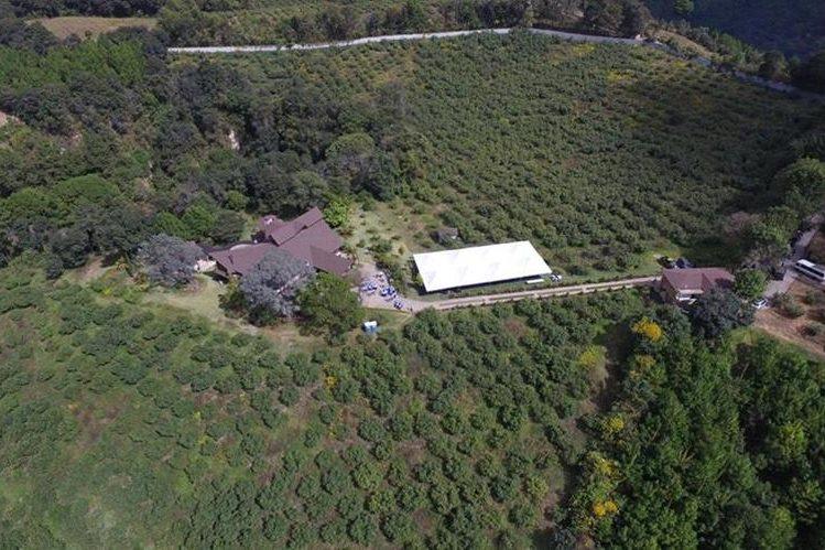 Cultivo de aguacates Hass rodean la propiedad en Zaragoza, Chimaltenango. (Foto Prensa Libre: Hemeroteca PL)