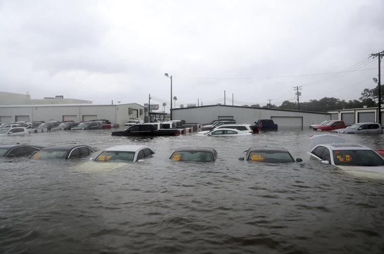 Varios vehículos quedaron sumergidos en un predio de venta de autos en Dickinson, Texas.(AP).