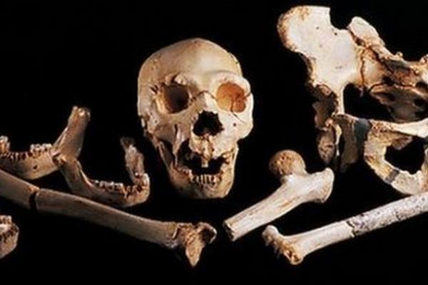 El fémur descubierto proviene de un Homo heidelbergensis, un grupo extinto de humanos estrechamente relacionado con los neandertales.