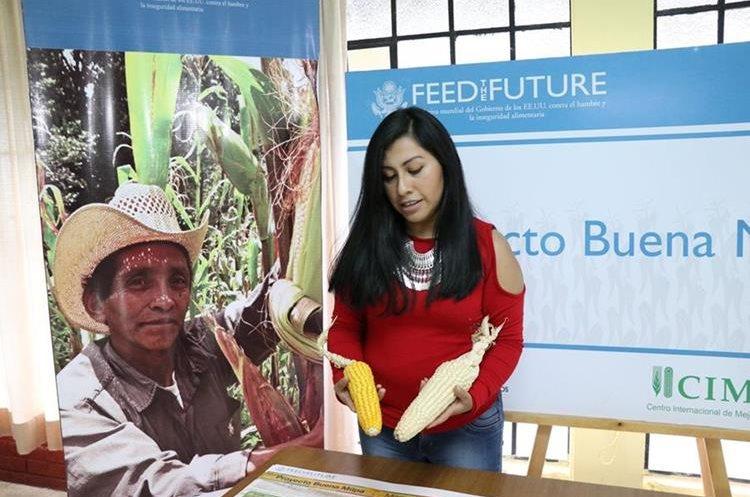 Personal del Icta promueve cambios e innovaciones en semillas para agricultores. (Foto Prensa Libre: María Longo)
