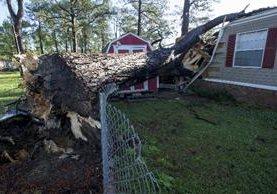 La tormenta derribó un árbol sobre una <span>casa móvil</span> <span>en&nbsp;</span><span> Alabama</span>.