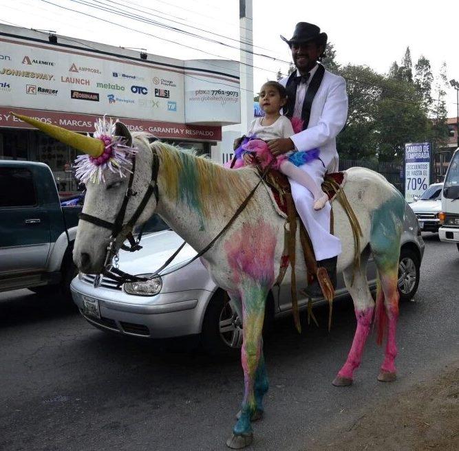 Hansy Rulamán, y su hija Maya, pasean por las calles de Xela, en un caballo disfrazado de unicornio. (Foto Prensa Libre: Stereo100noticias)