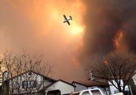 Más de 10 mil hectáreas han sido consumidas por las llamas.