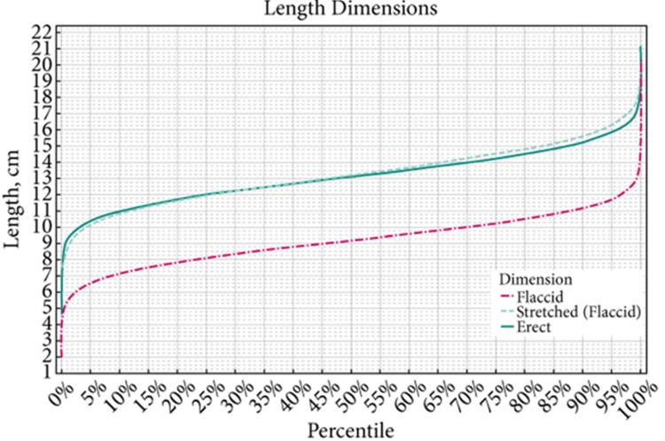 tamaño normal del pene segun la edad