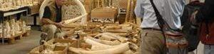 China confisca marfil de contrabando.