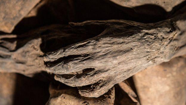 Las zonas del cuerpo con pocos fluidos, como manos, los dedos de los pies y el escroto se deshidratan más rápido. KIRIL CACHOVSKI DEL PROYECTO MOMIAS LITUANAS 2015