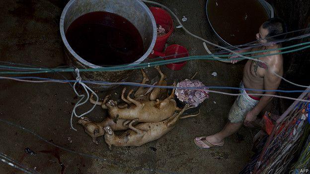 Los que se oponen al Festival de Yulin denuncian el trato que se da a los perros que se comen. AFP).