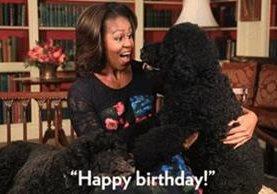 Puedes usar los GIFs para felicitar cumpleaños y expresar emociones a través de imágenes animadas. (GIPHY)