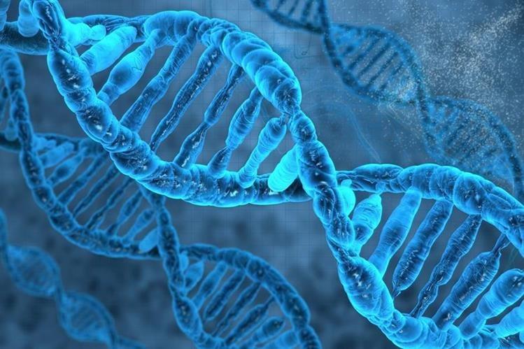 Este descubrimiento es el principio de una revolución que afectará a los tratamientos personalizados de cáncer.