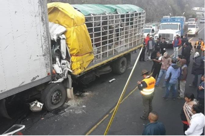 La mayoría de accidentes protagonizados por el transporte de carga ocurren durante la madrugada.(Prensa Libre: Hemeroteca PL)