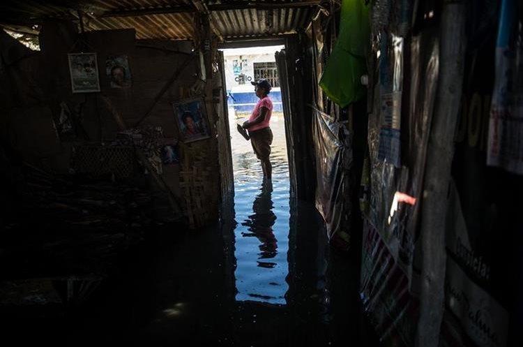 Las inundaciones en Piura, Perú, ha dejado a 150 familias damnificadas. (Foto Prensa Libre: AFP)