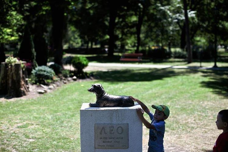 Un niño se acerca al monumento erigido a Leo y lo toca. La mascota es recordada por su valentía al haber defendido a una niña de 10 años. (Foto Prensa Libre: AP).