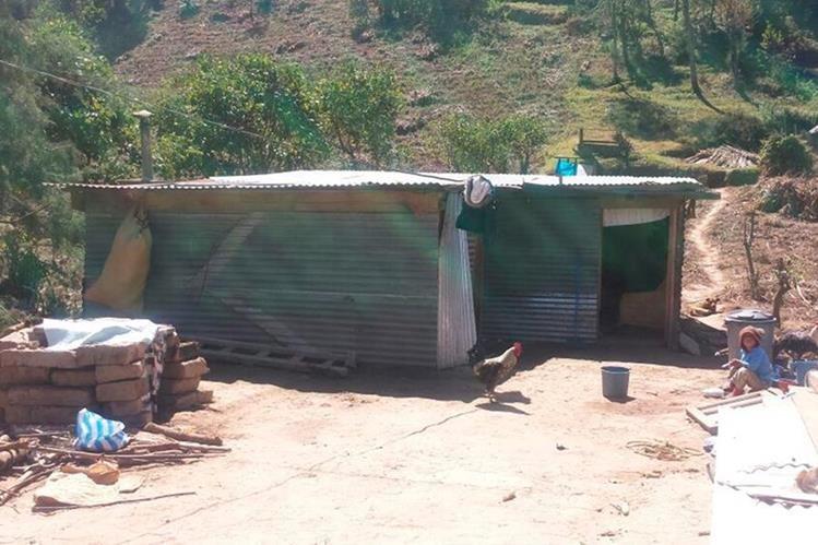 Familias construyeron casas temporales con láminas y madera porque el Gobierno les ofreció una vivienda formal. Sin embargo, las autoridades no han cumplido. (Foto Prensa Libre: Whitmer Barrera)