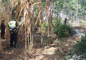 Agentes policiales resguardan cadáveres localizados en Sumpango, Sacatepéquez. (Foto Prensa Libre: Víctor Chamalé)
