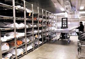 En una morgue de Arizona se encuentran más de mil 500 personas fallecidas sin identificar, según la PDH. (Foto Prensa Libre: PDH)