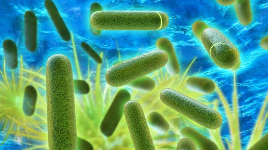 Un brote de legionelosis, una neumonía causada por una bacteria, dejó 12 muertos en Nueva York el año pasado y obligó a cambiar las normas sobre inspecciones de torres de enfriamiento. (THINKSTOCK)