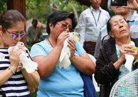 Liberan medio centenar de palomas en el Cementerio Los Parques. (Foto Prensa Libre: Rodrigo Gaytán, Photography)